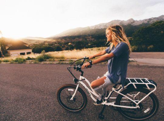 cykelpadinrejse